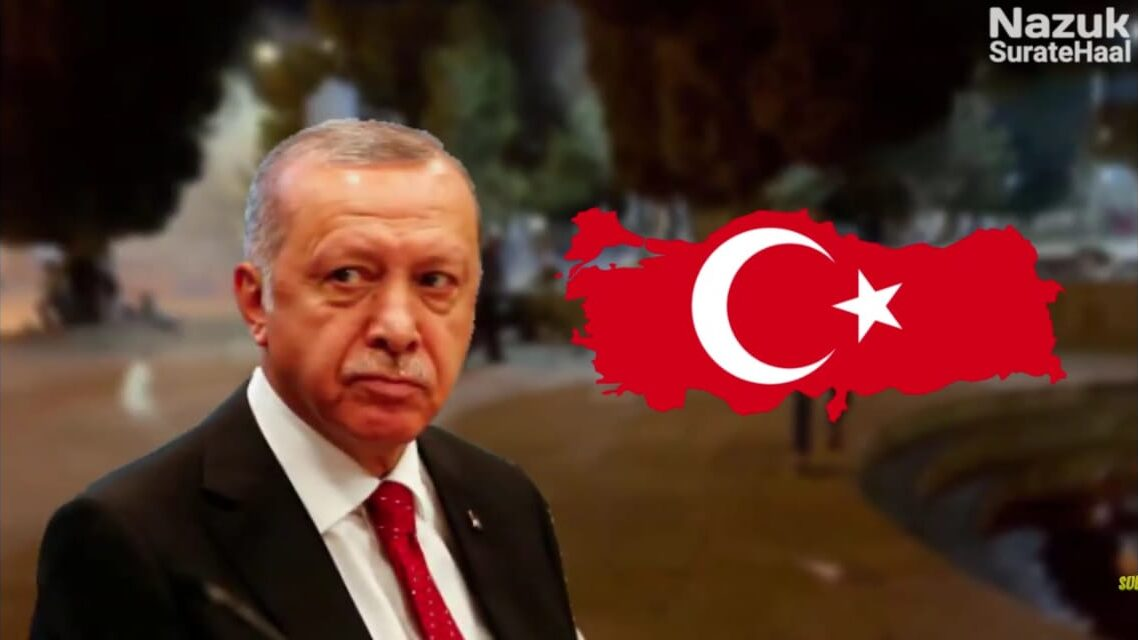 Erdogan and Turkey shows solidarity with Palestinians